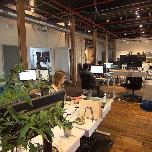 Des employés travaillent à l'ordinateur dans un grand local.