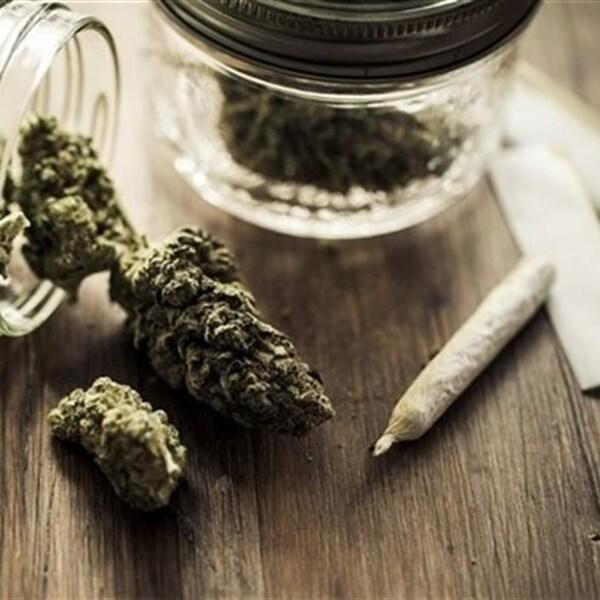 De la marijuana est versée sur une table, à côté d'une cigarette