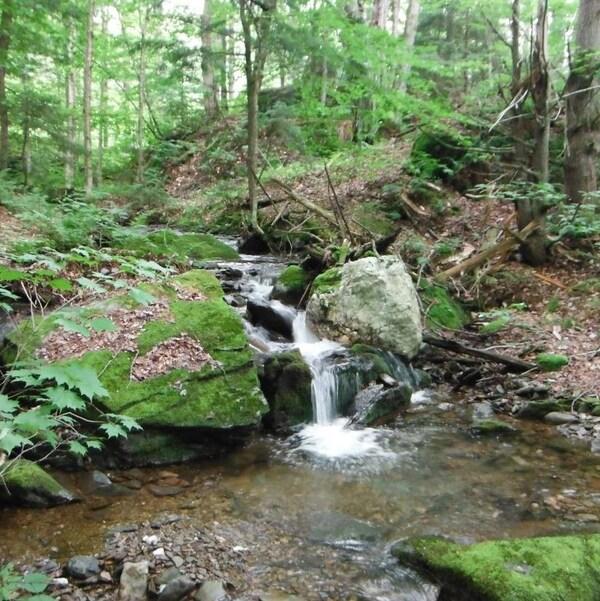60 hectares protégés dans la massif de Glen Foster.