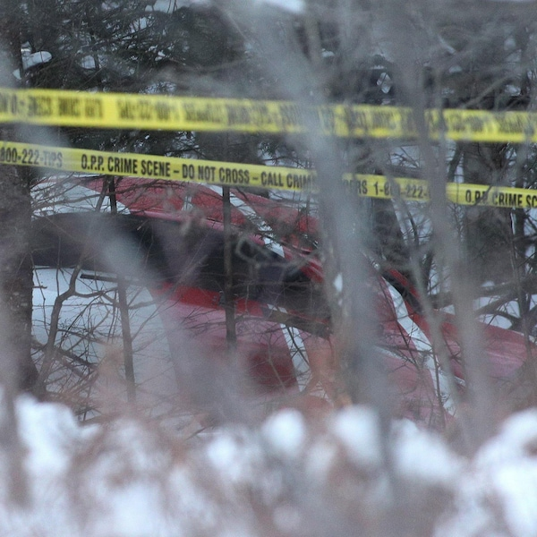 L'hélicoptère qui s'est écrasé aperçu à travers les branches.