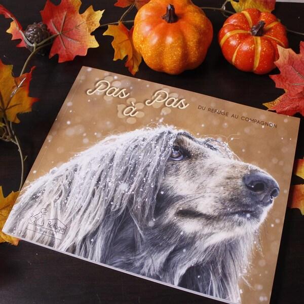 Un livre intitulé Pas à pas du refuge aux animaux est posé sur une table décorée pour l'automne.