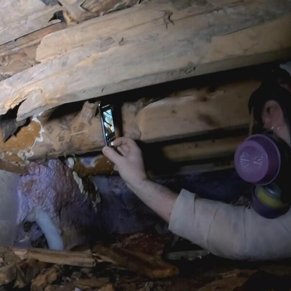 Vêtu d'une combinaison blanche et portant un masque, Steve Frigon photographie le champignon à l'aide de son téléphone.