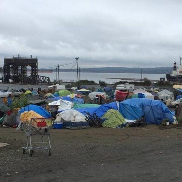 Plusieurs dizaines de tentes entassées sur un terrain sur le bord de l'eau.
