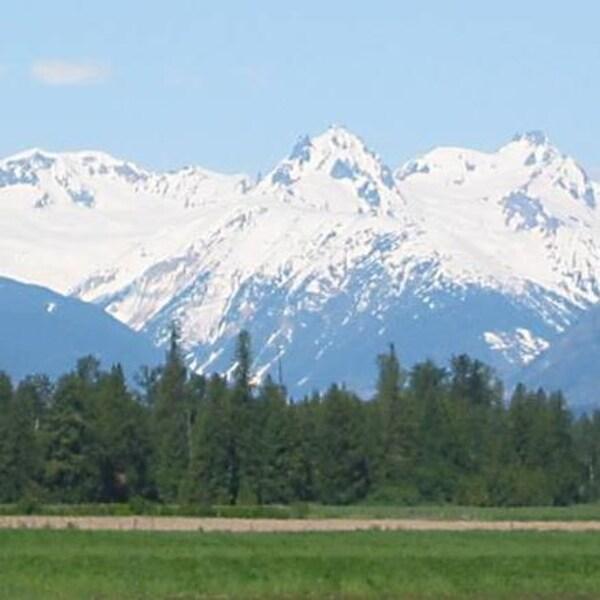 Plan large sur le mont Meager avec à l'avant-plan un champ vert bordé d'arbres.