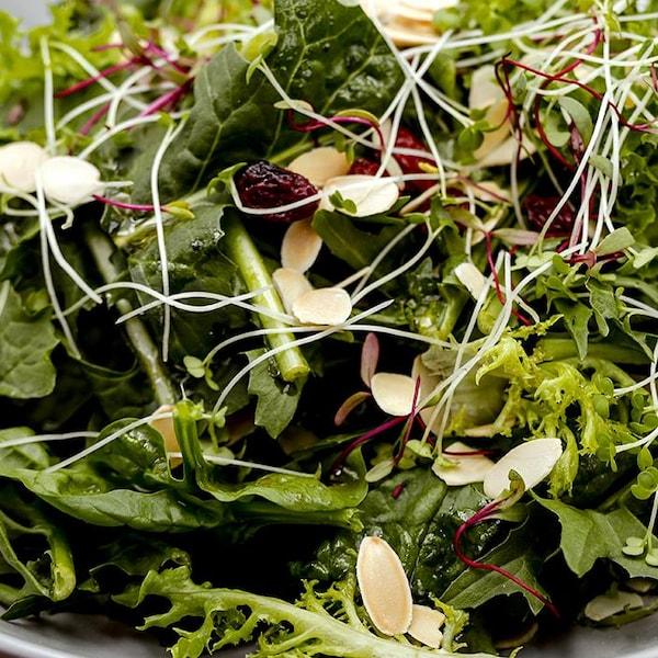 Salade d'épinards et de pousses de moutarde d'Émilie Rizzetto.