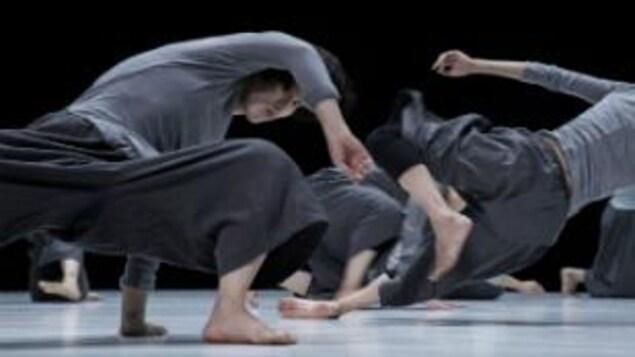 Des danseurs sur scène au Festival Transamériques.