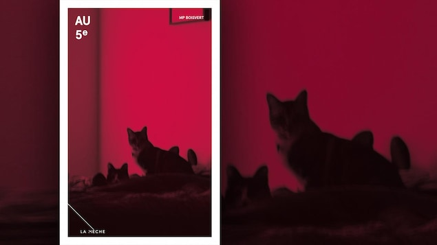 La couverture du livre « Au 5e » , de M. P. Boisvert