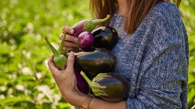 Plan rapproché d'une femme dont on ne voit pas le visage qui tient contre sa poitrine sept aubergines.