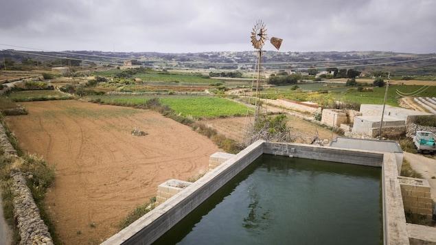 Des champs et un bassin d'eau pour l'agriculture à Malte