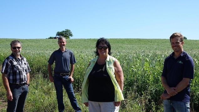 De gauche à droite : le directeur général de la Fédération de l'UPA de la Gaspésie-Les Îles Guy Gallant, l'agronome Germain Babin, la présidente de l'organisation Michèle Poirier et le fondateur de SCV Agrologie, Louis Pérusse.
