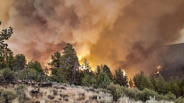 Un feu qui fait rage dans l'Oregon,  le dimanche 11 juillet 2021.