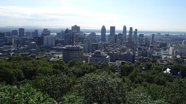 Vue des immeubles du centre-ville de Montréal et des arbres sur le flanc du mont Royal