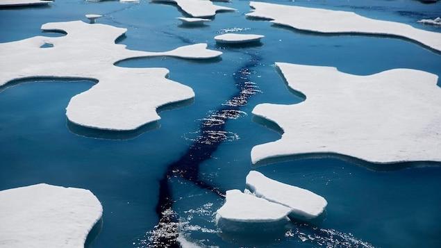 Des glaces qui fondent.