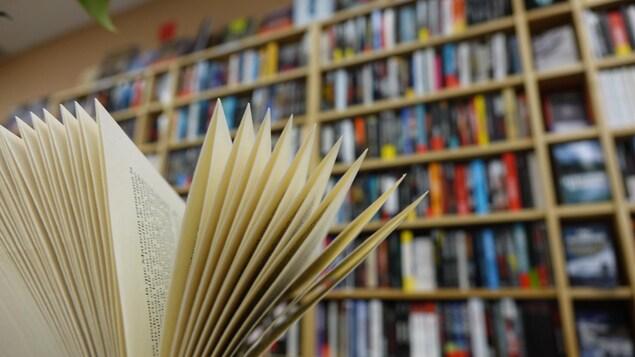 En avant-plan, un livre ouvert devant une bibliothèque bien remplie.