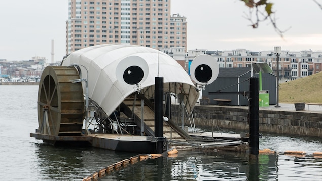 Mr Trash Wheel, une machine qui bloque le plastique dans le port de Baltimore.