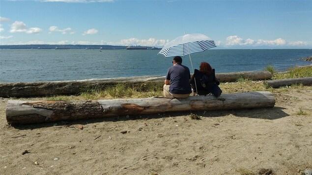 Des canadiens la recherche de l 39 amour arnaqu s pour 17 m for Lien dans une nouvelle fenetre