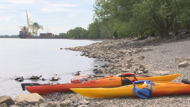Une plage avec deux kayaks sur le rivage
