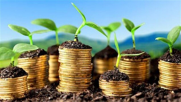 Les régimes volontaires d'épargne-retraite sont peu convoités.