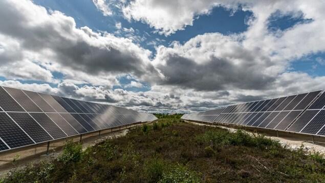Des panneaux solaires dans la toundra.