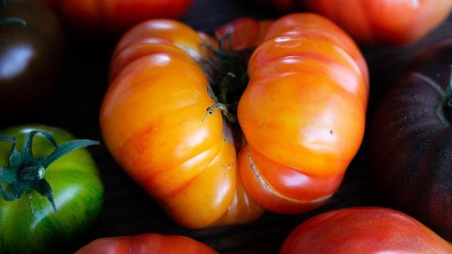 Une belle grosse tomate difformes d'une jaune orange étincelant.