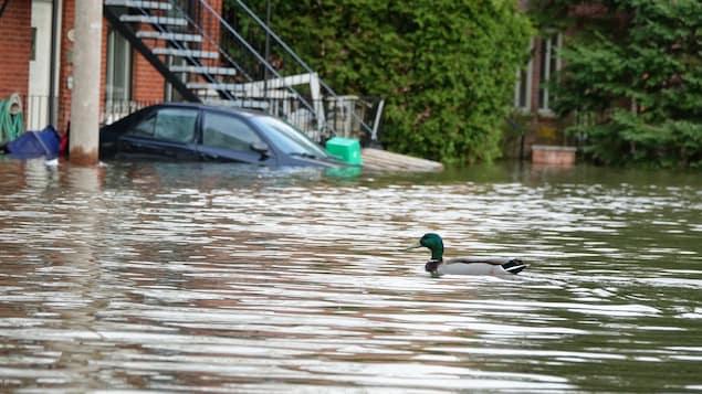 La communauté métropolitaine de Montréal adopte une déclaration d'urgence climatique