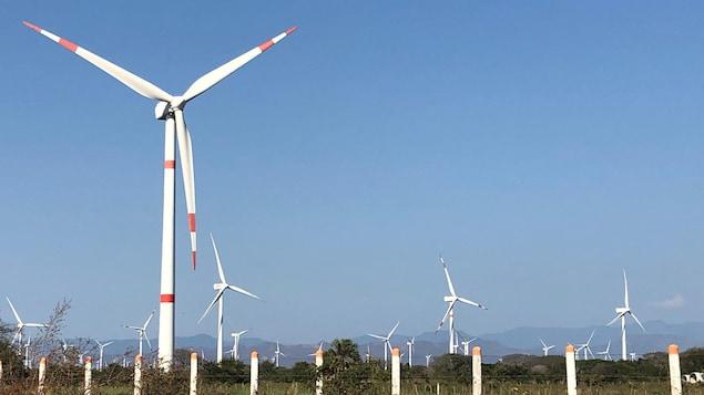 Le parc éolien à Union Hidalgo au Mexique