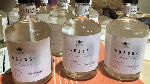 Des bouteilles de mezcal