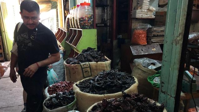 Le chef Rodolfo Castellanos au marché central de Oaxaca qui regarde des sacs de piments séchés