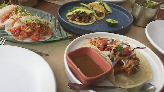 Trois assiettes de tacos différents