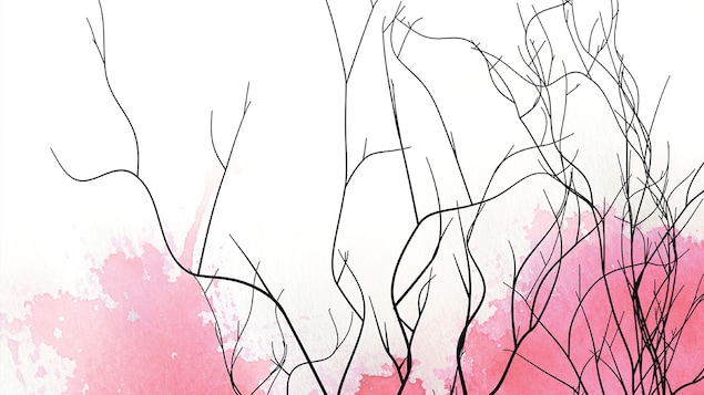 La couverture du roman Ligne brisée de Katherena Vermette