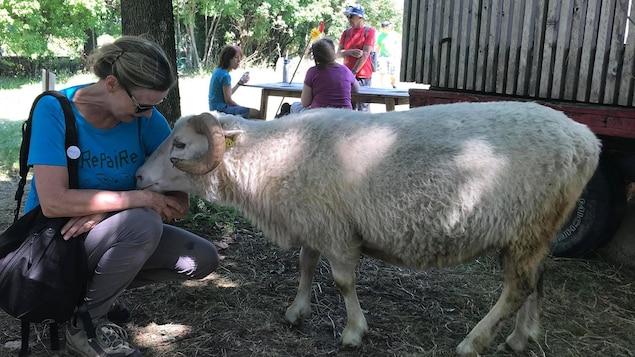 Une dame caresse un mouton au parc
