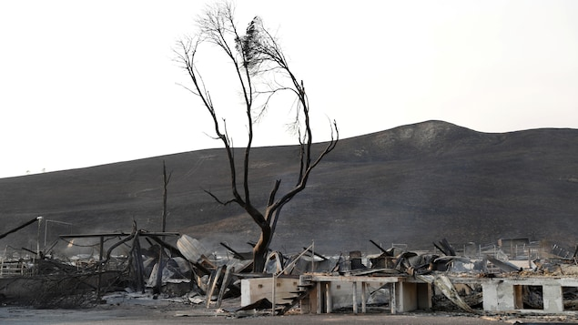 Des restes de maisons détruites par le feu