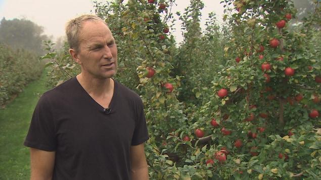 La Honeycrisp a permis à la ferme de Jonathan Fuller, à Avonport, de prospérer.