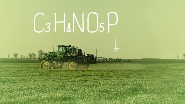 Un épandage de glyphosate dans un champ.
