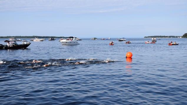 Des athlètes nagent dans le lac Saint-Jean.
