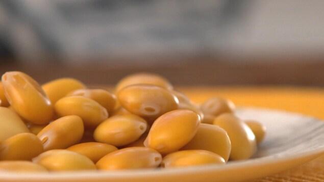 Des graines de lupins dans une assiette