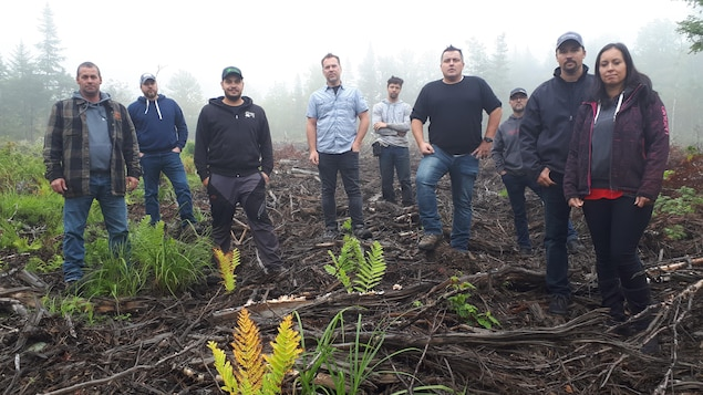 Des acériculteurs posent devant une forêt coupé par l'industrie.