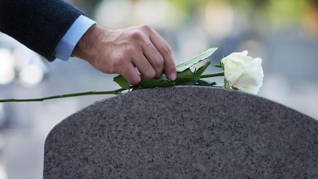 Un homme dépose une rose blanche sur le dessus d'une pierre tombale lors de funérailles.