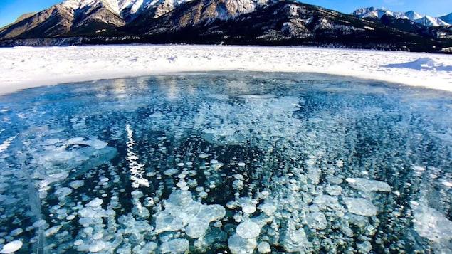 Bulles de méthane cristallisées sous la glace du lac Abraham.