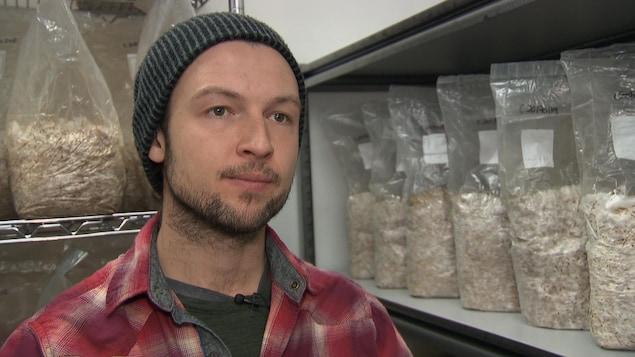Alexandre Veillette est dans le laboratoire de La Pleurotière. Des sacs de grains d'avoine sont en voie d'être colonisés par le Mycélium.