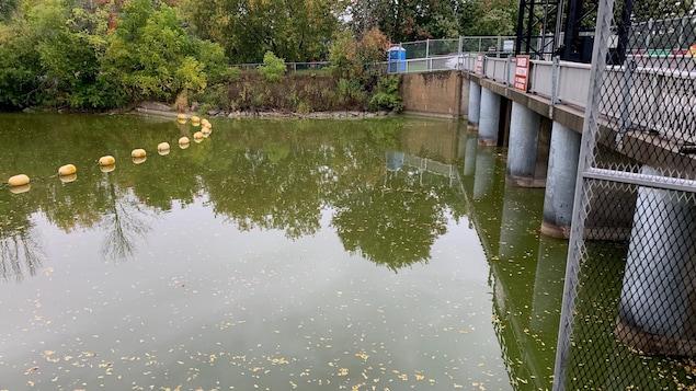 La rivière Nation Sud à la hauteur de Chesterville.
