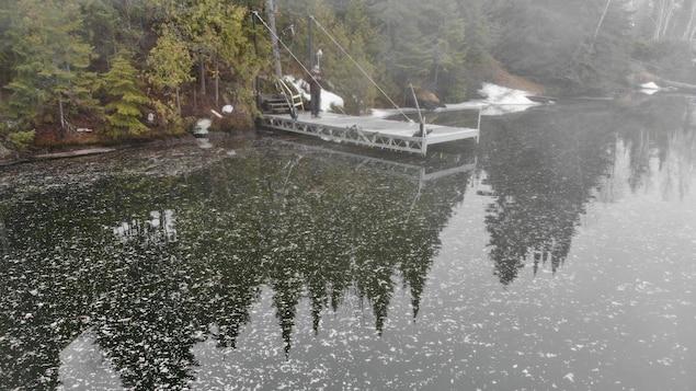 Un homme debout sur un quai au bord d'un lac, sur lequel on peut voir plein de taches blanches.