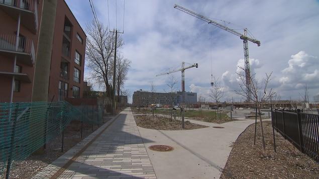 Voie piétonne du campus MIL de l'Université de Montréal.