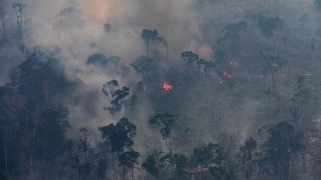 Vue aérienne de la forêt amazonienne en flammes
