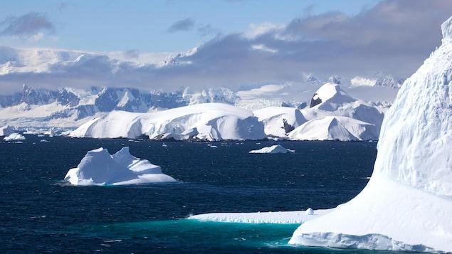 Des icebergs dans le détroit de Gerlache situé dans l'océan Austral.