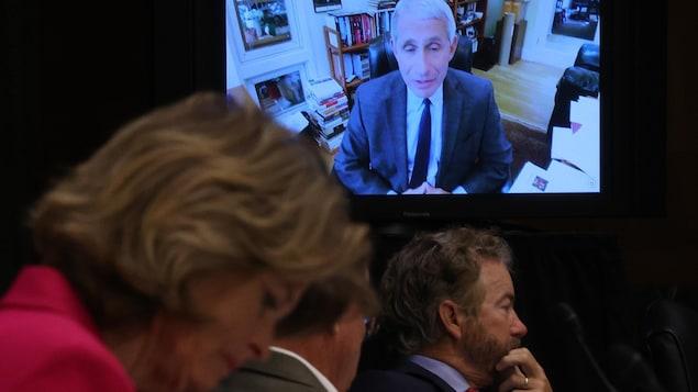 Le témoignage d'Anthony Fauci est diffusé sur un écran derrière des sénateurs américains.