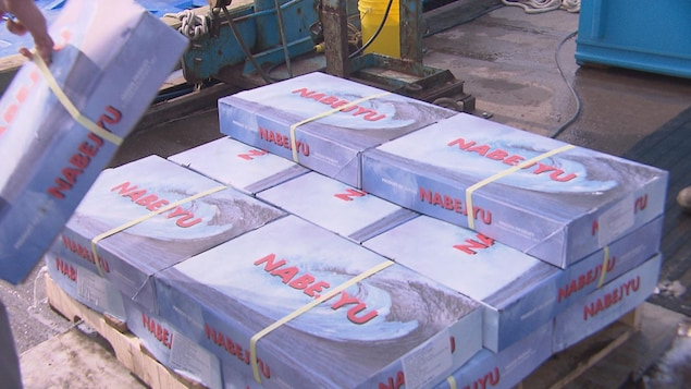 Du poisson en provenance du Japon dans de grosses boîtes grises.