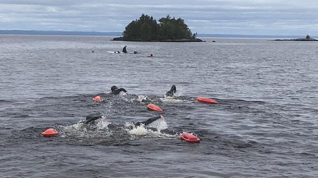 Quelques nageurs se déplacent dans un cours d'eau.
