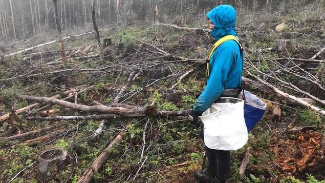 La dure réalité du métier de planteur d'arbres est revenue rapidement aux membres du groupe.