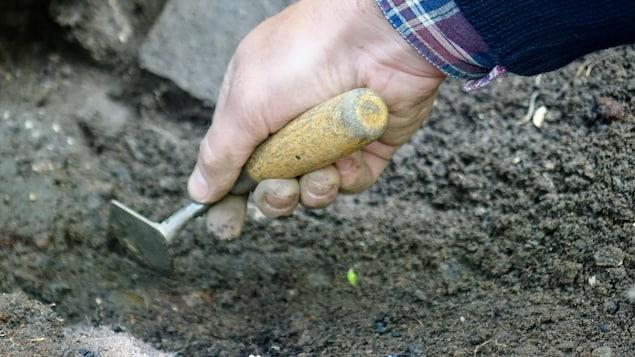 Certaines découvertes feront appel à l'expertise d'archéobotanistes  en raison de la présence de grains carbonisés trouvés près du moulin.
